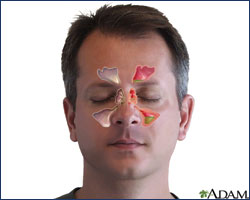 Division of Otolaryngology